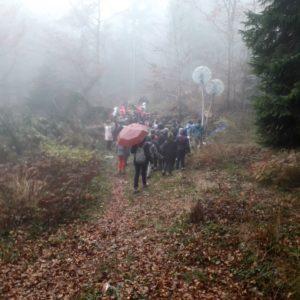 passeggiata nella nebbia a SelvArt