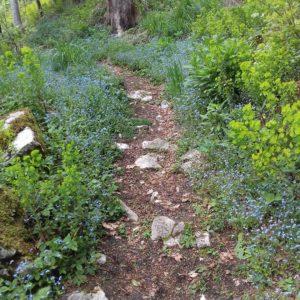 sentiero a SelvArt