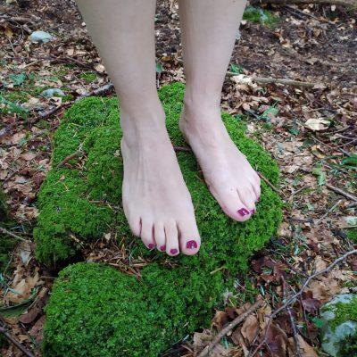 dialoghi con la foresta piedi